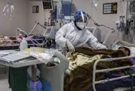 فوت هفت بیمار کرونایی طی ۲۴ ساعت در زنجان