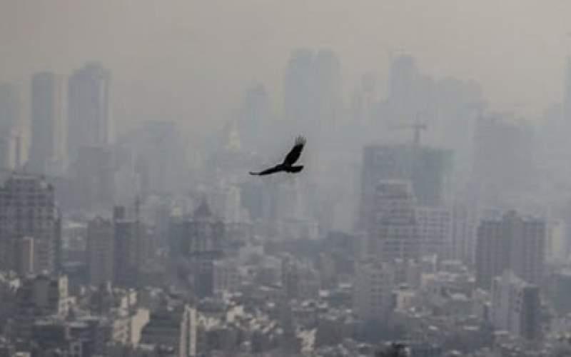 هوای امسال آلودهتر از پارسال است؟