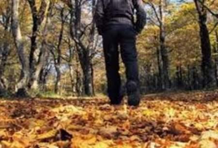 """اگر در """"پاییز"""" این علائم را دارید، افسردهاید!"""