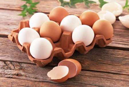 نرخ هر کیلو تخممرغ ۱۱ هزار و ۵۰۰ تومان