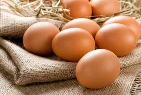 مصرف زیادتخم مرغ خطردیابت راافزایش می دهد