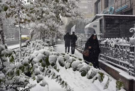 بارش اولین برف پاییزی در تهران