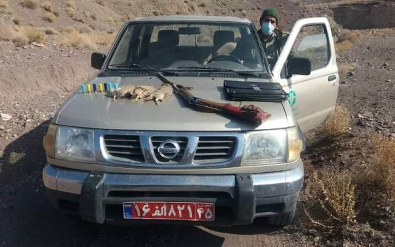 دستگیری شکارچیان پرندگان وحشی در رفسنجان