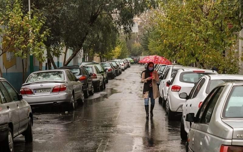 بارش باران در تهران/ تصاویر