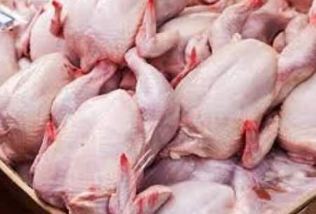 چرایی گرانی افسارگسیخته مرغ در بازار؟