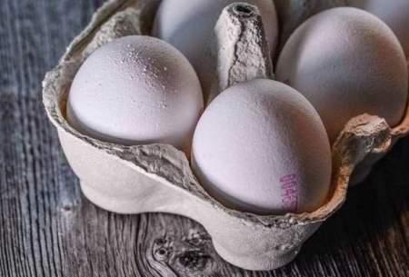 تخم مرغ شانهای ۳۶ هزار تومان