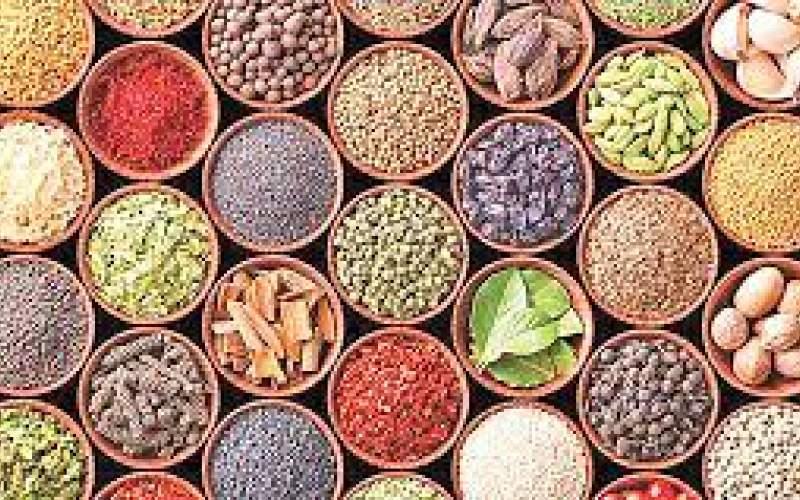 افزایش ۱۵ تا ۲۵درصدی قیمت گیاهان دارویی