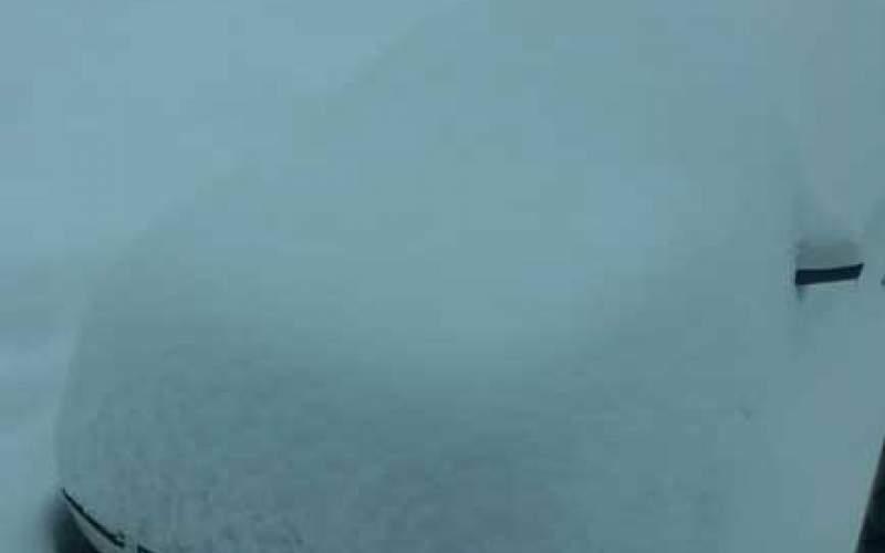 بارش برف سنگین در کردستان/عکس