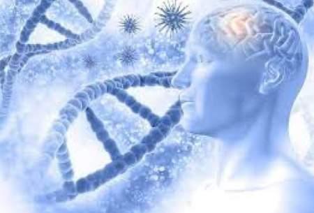 ویرایش ژنها راهی برای اجتناب از آلزایمر