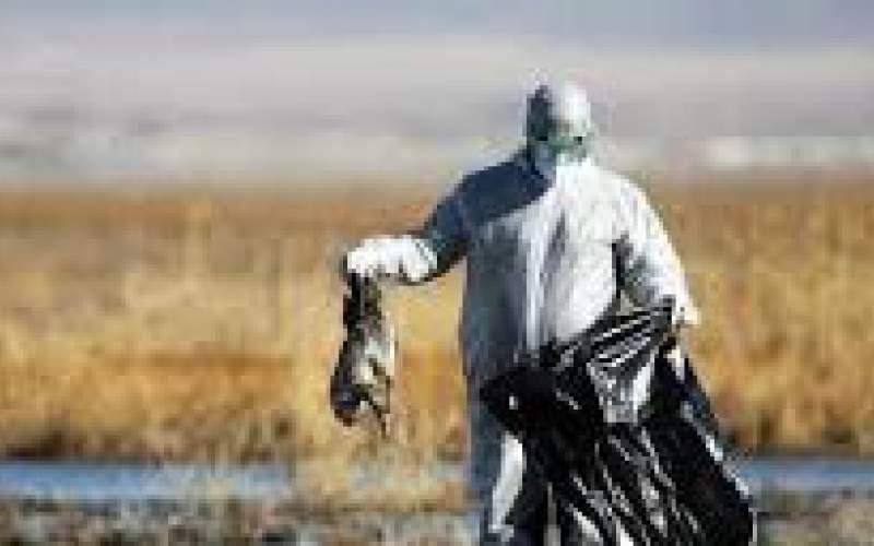 شیوع آنفلوآنزای پرندگان در همسایگی البرز