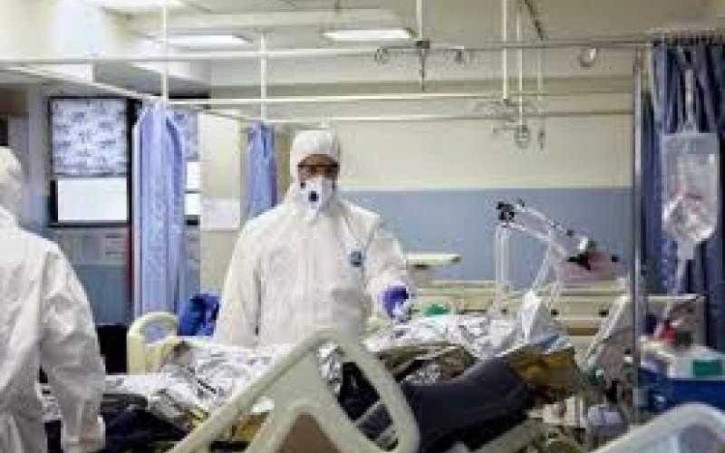 فوتیهای کرونا در بوشهر از مرز۸۰۰نفر گذشت