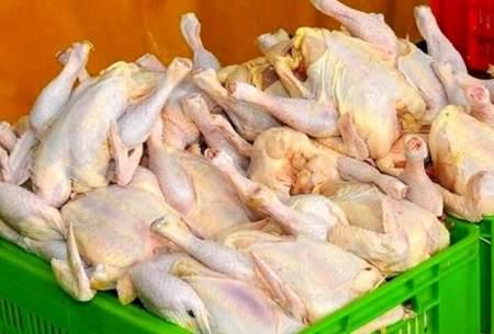انحصارگران، پُشت گرانی مرغ در روزهای اخیر