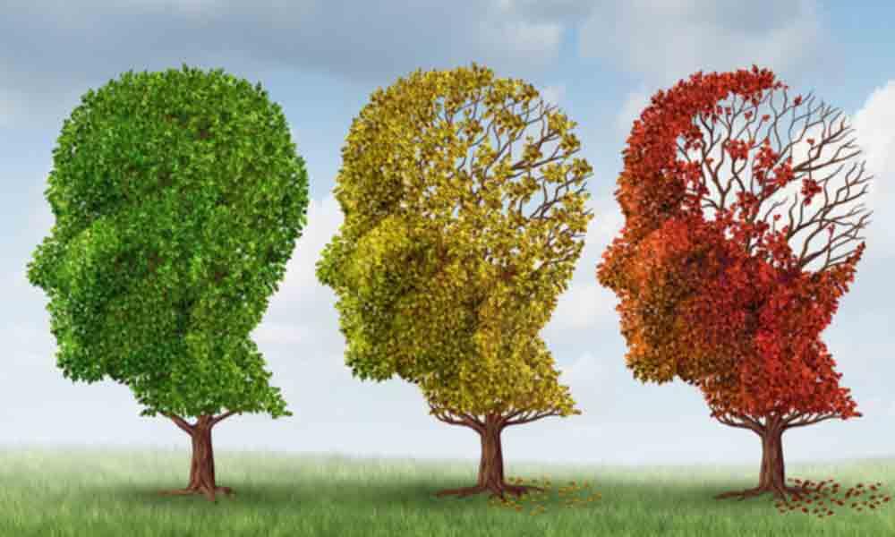 تمام علتهای تعجبآور کاهش حافظه