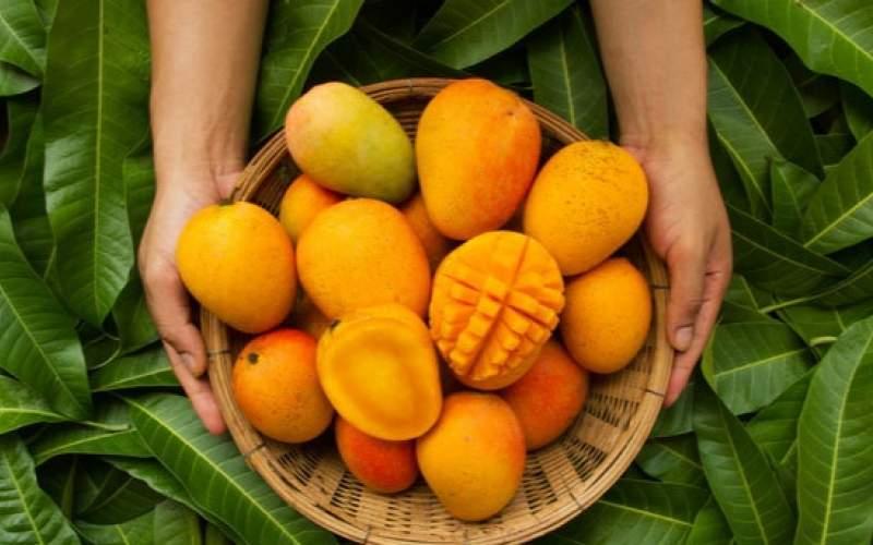 میوه های نارنجی را بخورید و جوان بمانید