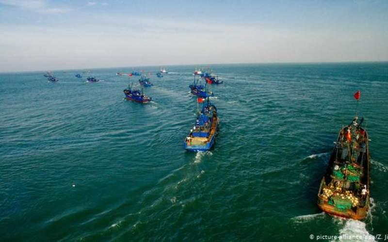 چگونه چین دریاها را از ماهی خالی میکند؟