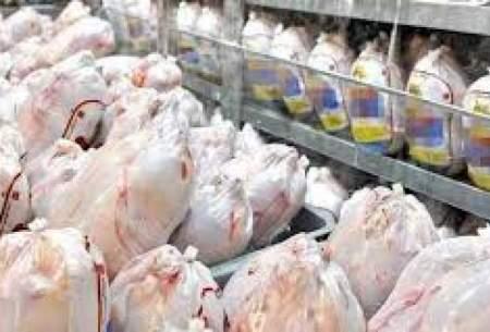 قیمت مرغ در میادین تهران