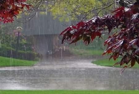 شمال و شمال شرق خوزستان بارانی میشود