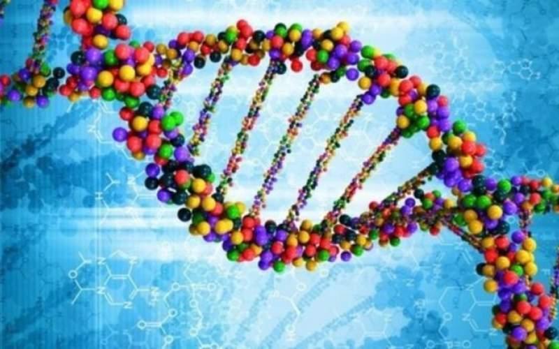 ژنتیک چه نقشی در ابتلا به کووید ۱۹ دارد؟