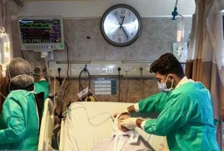 ثبت یک روز بدون فوتی کرونا در بوشهر