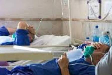 بستری ۵۲ بیمار جدید مبتلا به کرونا در البرز