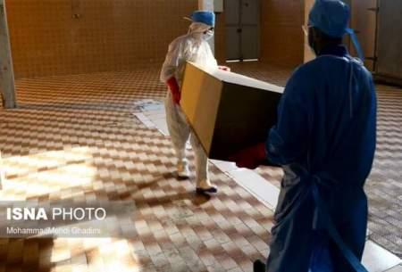 فوتیهای کرونا در البرز در کمترین میزان خود