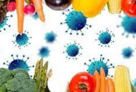 کرونا باعث افزایش ناامنی غذایی شده است
