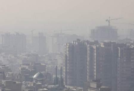 غذاهای مضردرروزهای آلودگی هوا را بشناسیم