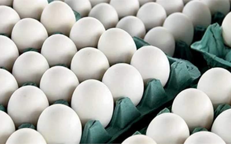 تخم مرغ به شانهای ۴۸هزار تومان رسید!