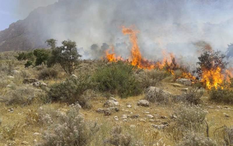 آتشسوزی در جنگلهای گلستان مهار شد