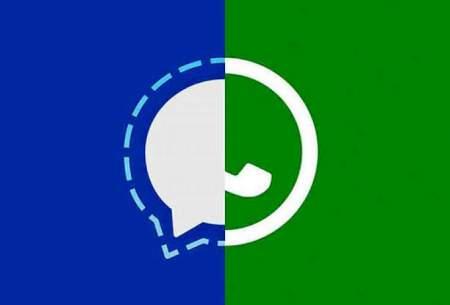 انتقال گروههای واتس اپ به سیگنال
