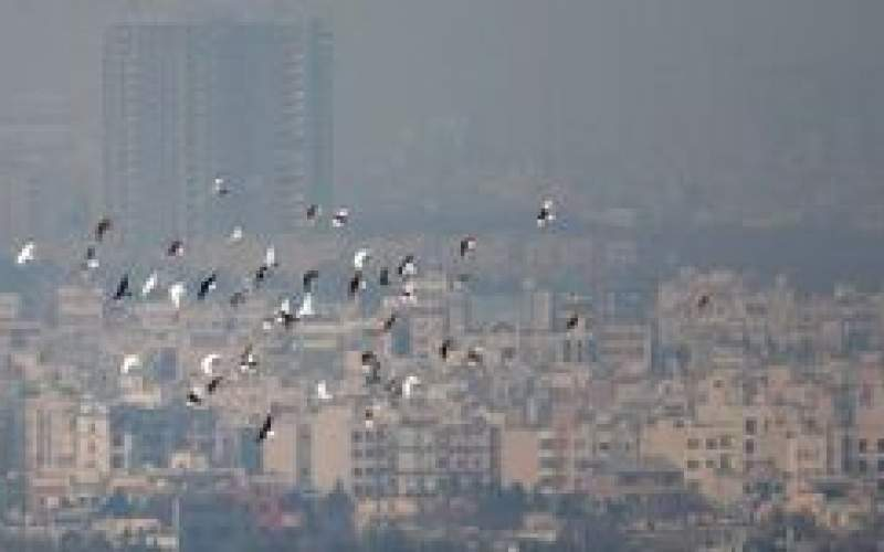 تهران همچنان در محاصره ذرات معلق است