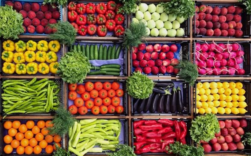 ۱۱ گزینه گیاهی برای افزودن به رژیم غذایی