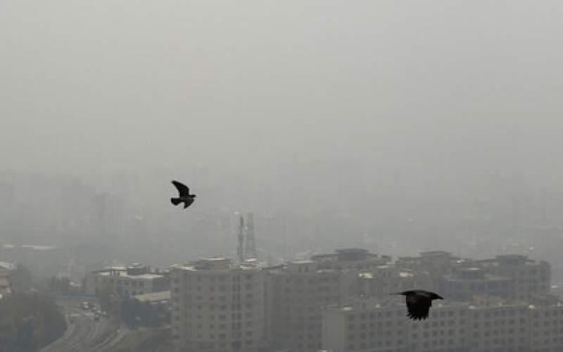 تشدیدآلودگی هوای تهران وهشدار وزارت بهداشت