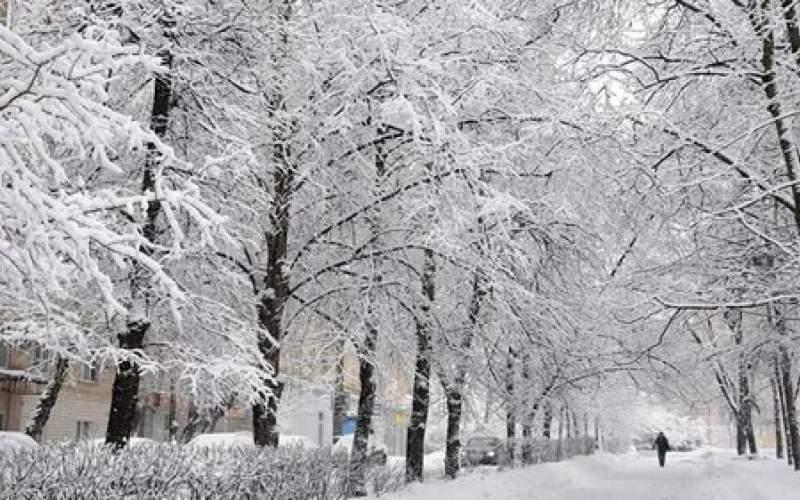 آغاز بارش برف و باران از فردا شب