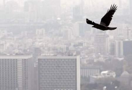 تنفس هوای آلوده خطرناکتر از بیماری ویروسی