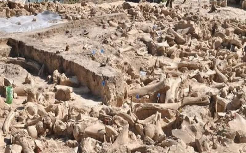 ۷ یافته مهم باستانشناسی در یک سال اخیر