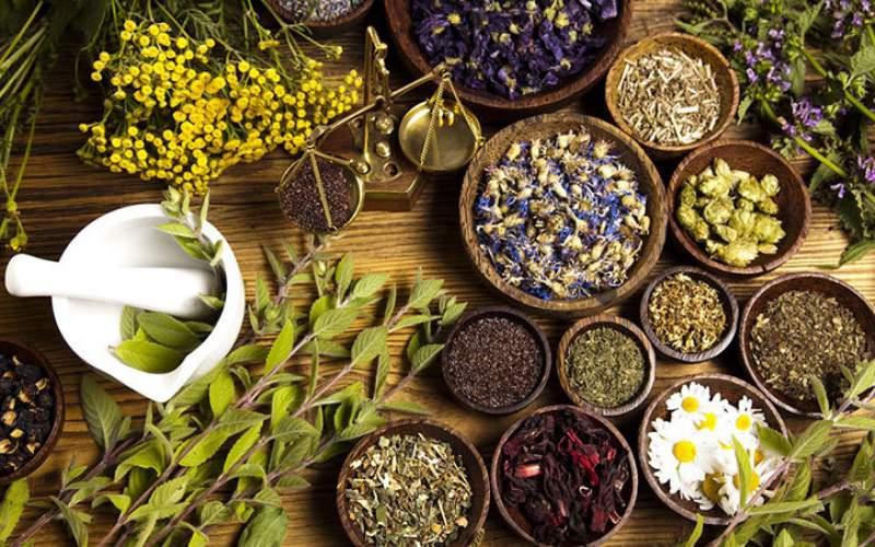 چطور با گیاهان دارویی خانه را ضدعفونی کنیم