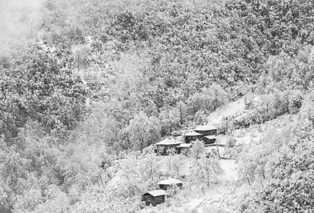 "زمستان زیبای جنگلهای تنکابن  <img src=""https://cdn.baharnews.ir/images/picture_icon.gif"" width=""16"" height=""13"" border=""0"" align=""top"">"