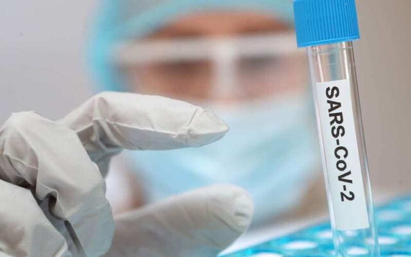 آیا پاندمی با آغاز واکسیناسیون خاموش میشود؟