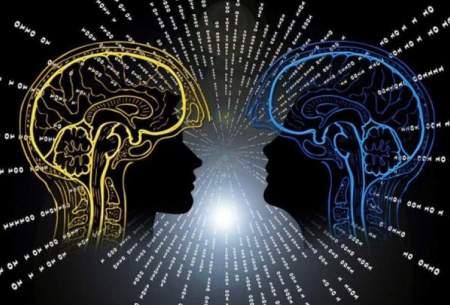 دانشمندان در حال طراحی مغز کوانتومی هستند