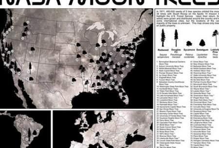 """ناسا نقشه """"درختان ماه"""" را منتشر کرد"""