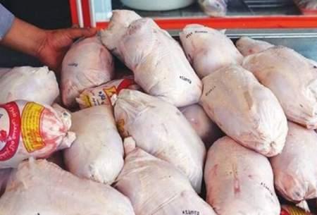 چرا قیمت مرغ دوباره افزایش یافت؟