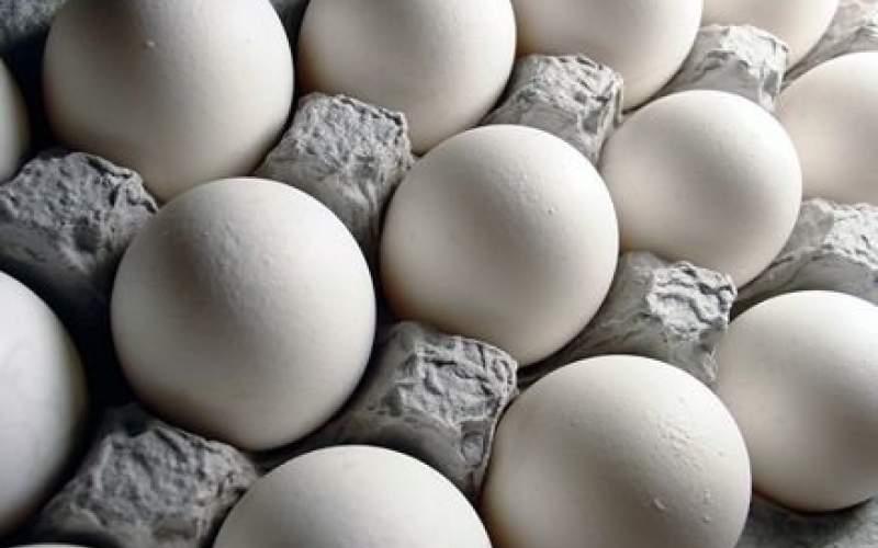 کلاف سردرگم درج قیمت بر روی تخم مرغ!