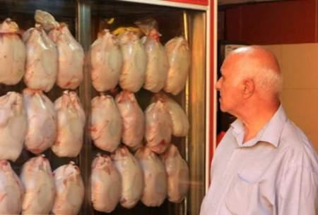 افزایش ۲۰ تا ۲۵ درصدی عرضه مرغ در اسفندماه