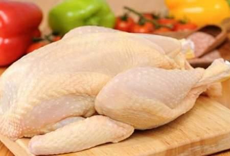 مرغ همچنان حوالی ۳۰هزارتومان پر میزند