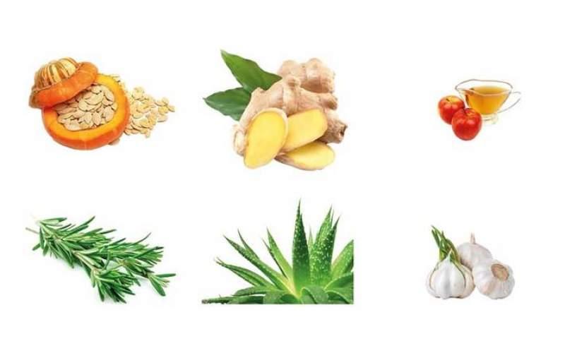 درمان ریزش مو با ۶ گیاه معمولی/اینفوگرافیک