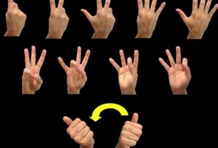 مغز چگونه زبان اشاره را پردازش میکند؟