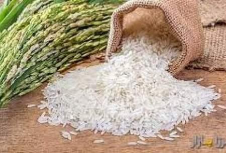 سود قیمت گران برنج شب عید در جیب دلال