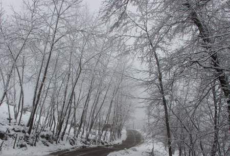"بارش برف در روستای «تابستان نشین»  <img src=""https://cdn.baharnews.ir/images/picture_icon.gif"" width=""16"" height=""13"" border=""0"" align=""top"">"