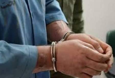 دستگیری سارقی با ۳۰ فقره سرقت در مترو